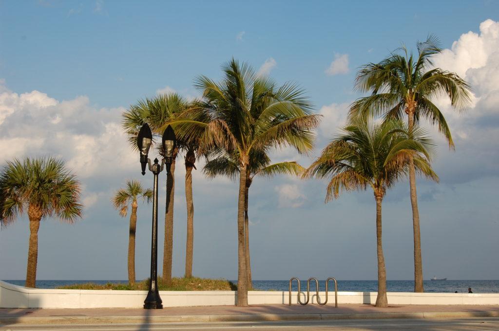 USA – Florida 2011